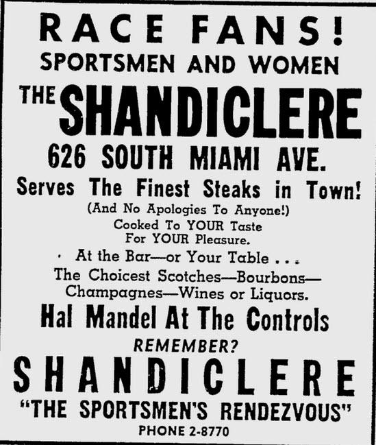 Shandiclere Ad