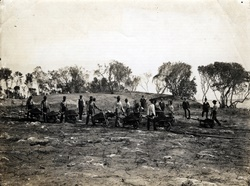 Clearing of grounds of Royal Palm Hotel in 1896