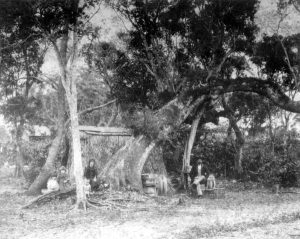 Miami Pioneers living in tent in 1896