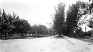 Pine Tree Drive on February 18, 1926