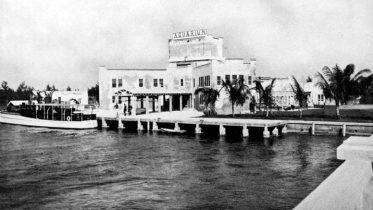 The Aquarium on Miami Beach