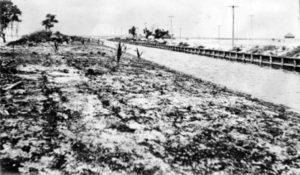 Work Began on Collins Bridge in 1912